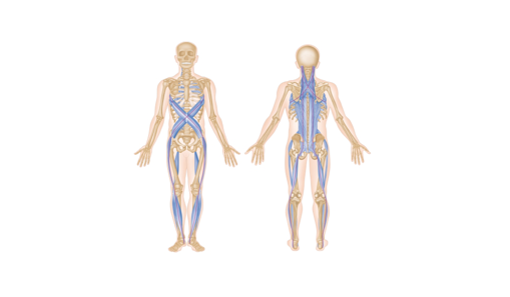 fascias lpgmedical-1