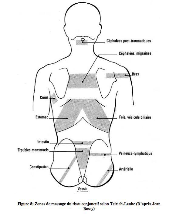 zones de massage du tissu conjonctif